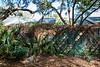 Park Wall & Trail-200213-018