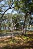 Park Wall & Trail-200213-029