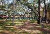 Park Wall & Trail-200213-065
