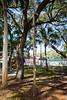 Park-Shuffleboard-200213-009