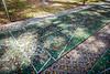Park-Shuffleboard-200213-005