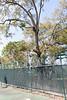 Tennis Courts-200213-033