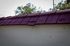Wall-Entrance-200211-155