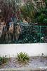 Wall-Entrance-200211-037