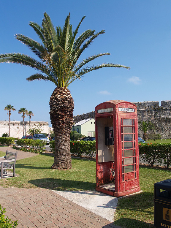 Old Phone Booth & Palm