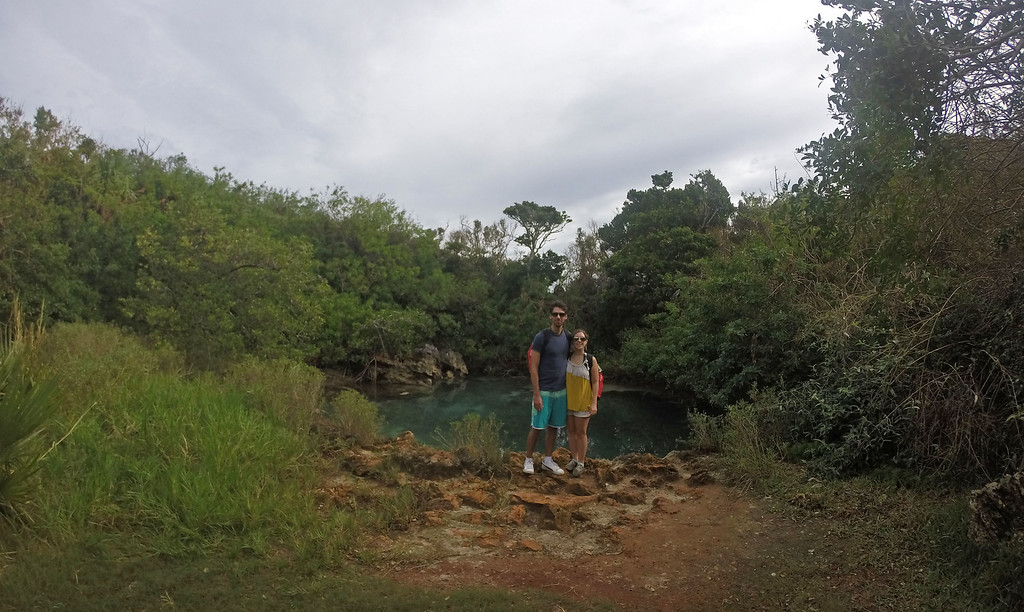 Tom Moore's Jungle - Bermuda Blue Lagoon