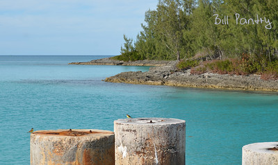 Flatts Inlet, Smith's, Bermuda