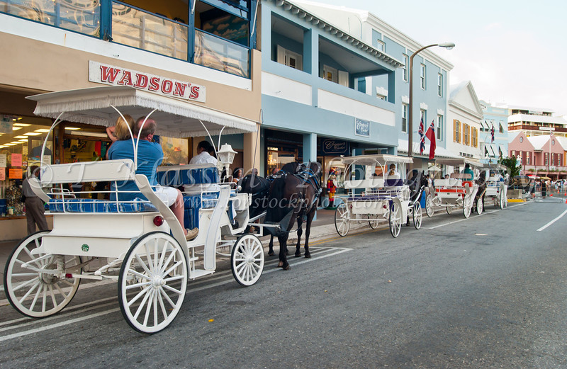 White horse drawn cariages available for rides in Hamilton, Bermuda, British Overseas Territory.