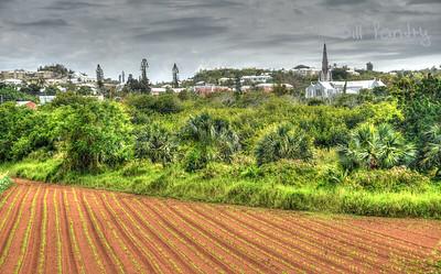 Paget field, Bermuda