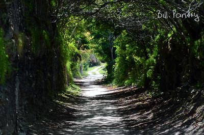 Railway Trail, Warwick, Bermuda
