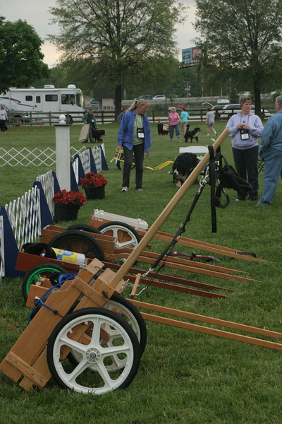 Carts ready and waiting.