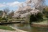 Japanese Garden at Roger Williams Park