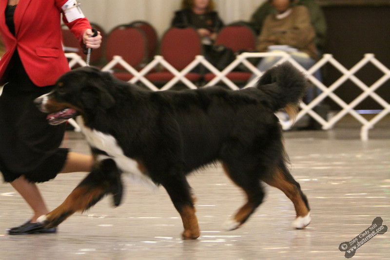 **** # 109 Third Place Onyx Here's Look'in At You Kid ***