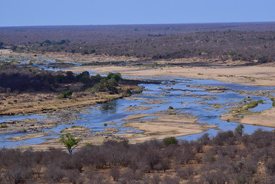 Kruger National Park Landscape