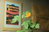 Eine echte Kellerpflanze :-)<br /> A real basement flower :-)