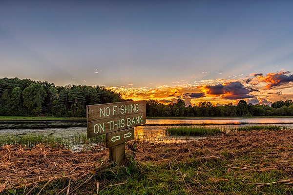 Sunset at Bernheim