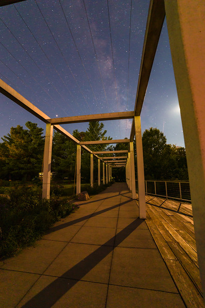 This photo was taken as part of Bernheim Forest's Night Hike Program