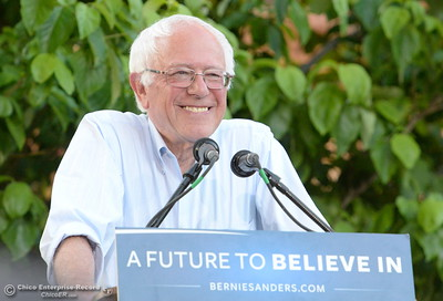 Candidate for President, Senator Bernie Sanders speaks to a large crowd gathered on the California State University Chico campus during a campaign stop in Chico, Calif. Thurs. June 2, 2016. (Bill Husa -- Enterprise-Record)