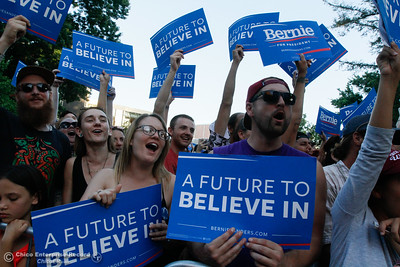 Bernie Sanders fans smile and wave signs in support during the Chico Bernie Rally June 2, 2016 at Chico State in Chico, Calif. (Emily Bertolino -- Enterprise-Record)