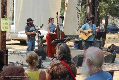 The Strung Nugget Gang performs Saturday during the 20th annual Berry Festival at the Berry Creek Grange. (Steve Schoonover -- Enterprise-Record)