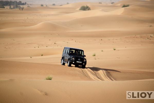 Dubai Desert Conservation Reserve - dune bashing before the wildlife.