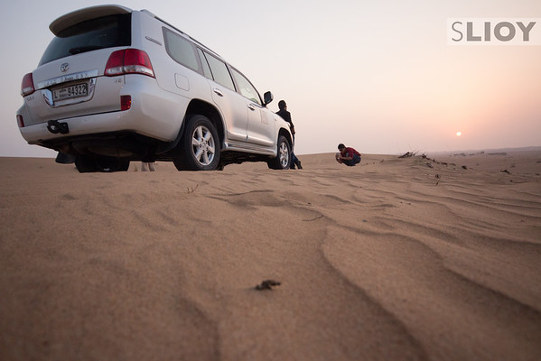 End of the Road in the Dubai Desert.