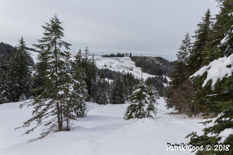 Blick vom Lochberg zur Chridegg