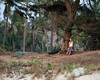 "Solitude <br /> Goa, India (1 of 7)<br /> for all 52 Goa photos, click here:<br /> <a href=""http://ericjohnsonvik.smugmug.com/India/Goa"">http://ericjohnsonvik.smugmug.com/India/Goa</a>"