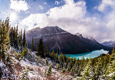 Fresh Snow Above Peyto Lake