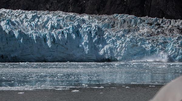 Glacier Bay Alaska-6