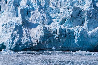 Glacier Bay Alaska-5