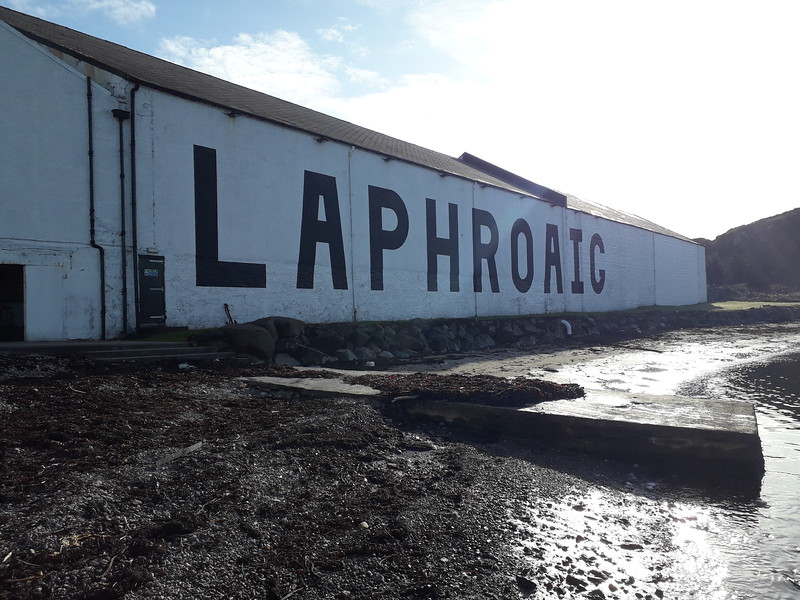 Look! We found a peat monster on Islay!