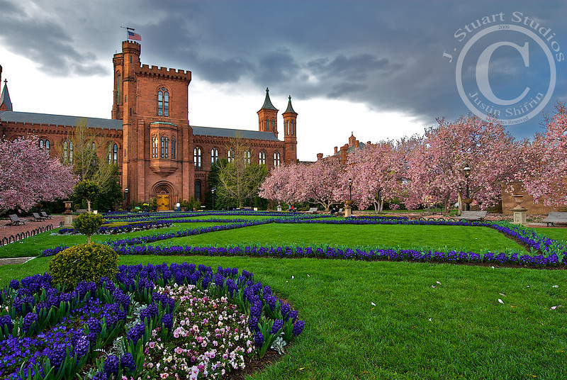 Imminent<br /> <br /> On a frigid (for a California boy) April afternoon the Smithsonian Castle courtyard was nearly empty.  The cherry blossoms were blooming in all their glory and the freshly planted purple garden was set off by the immense imminent clouds.