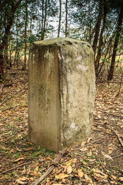 Parramatta Park, NSW, Australia<br /> One of the 9 boundary markers (6 still in or near their original locations - this one is near where the road crosses Domain creek) defining the edge of Parramatta. Erected in 1839 by David Lennox.