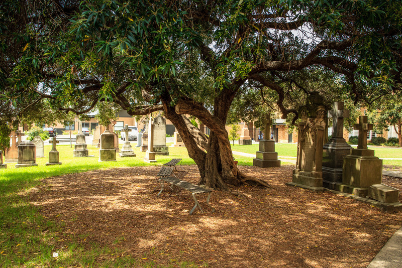 Ryde, Sydney, NSW, Australia<br /> Cemetery for St Charles Boromeo Church.