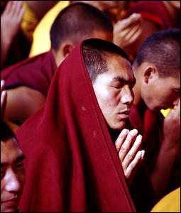 Tibetan Monk in Prayer