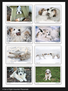 Set of Great Pyr Photo Placemats
