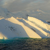 A big iceberg with penguin cargo in the Gerlache Straight off the Antarctic Peninsula