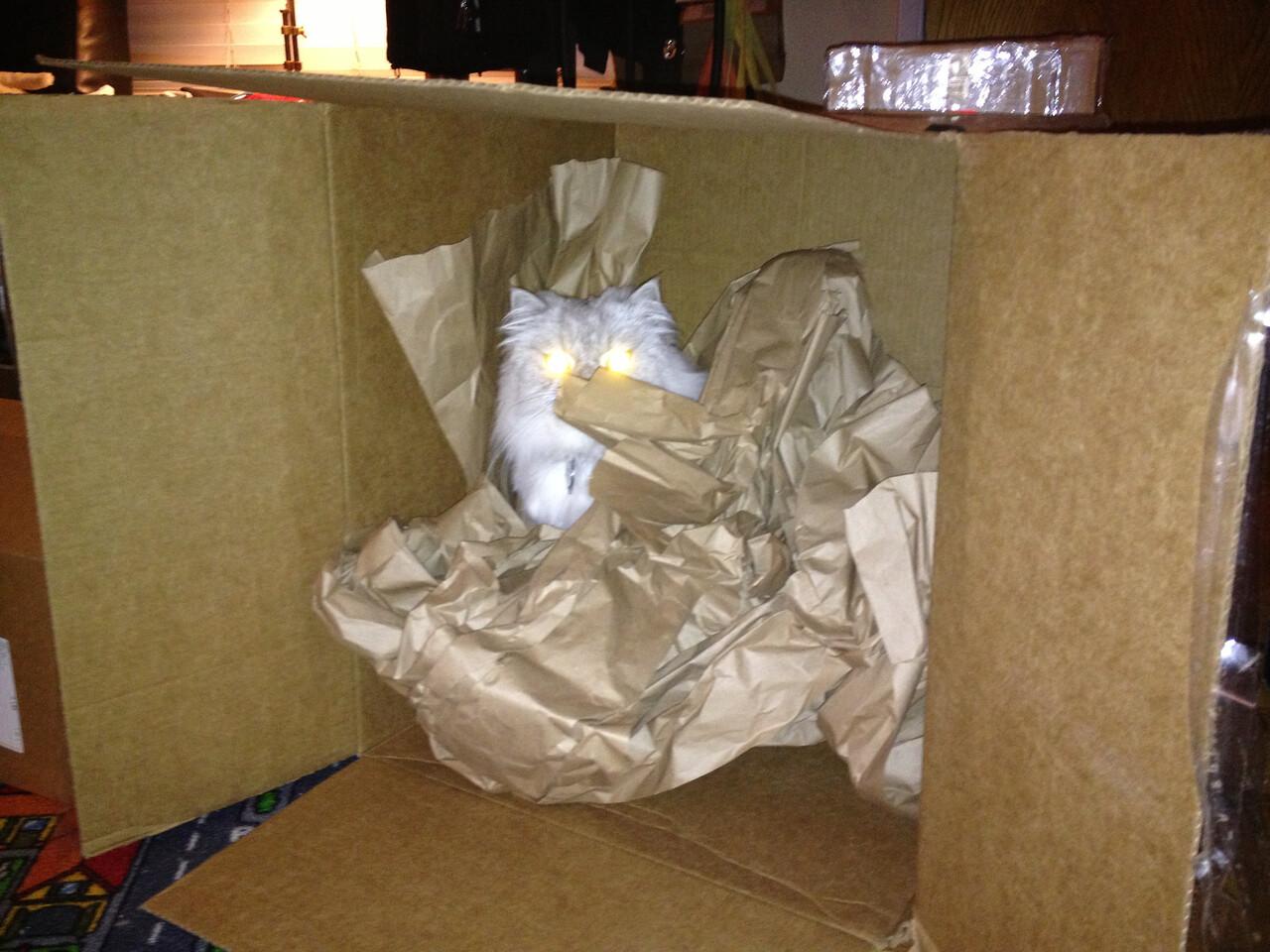 Laser eyes Herc in-a-box