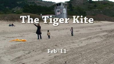 Tiger kite