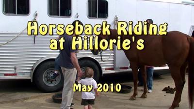 Hillorie's horses