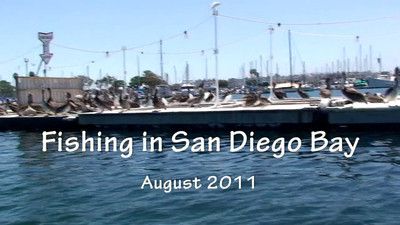 San Diego Fishing