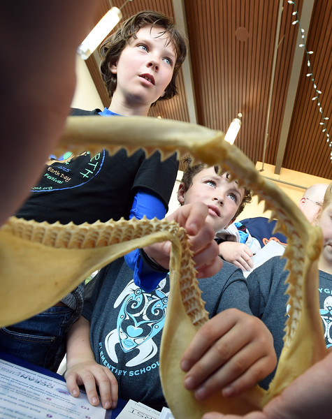 Earth Day at the Longmont Museum