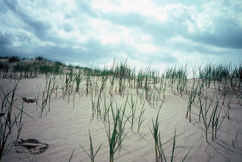 030 - 1983-06 - Indiana Dunes