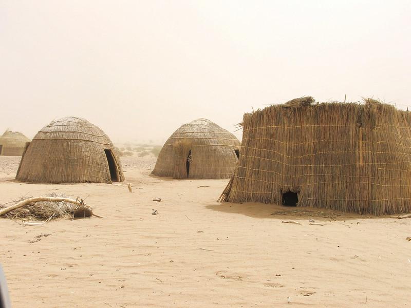 239 - 2006-03 - Niger