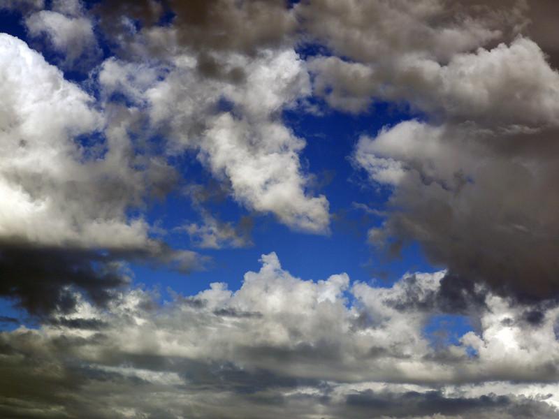 Idyllic sky above New Island, Falkland Islands