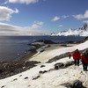 Hike to the rocky penguin nesting grounds on top of Cuverville Island, mainland Antarctic peninsula
