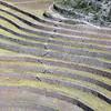 1039 - 2008-06 - Peru - Moray