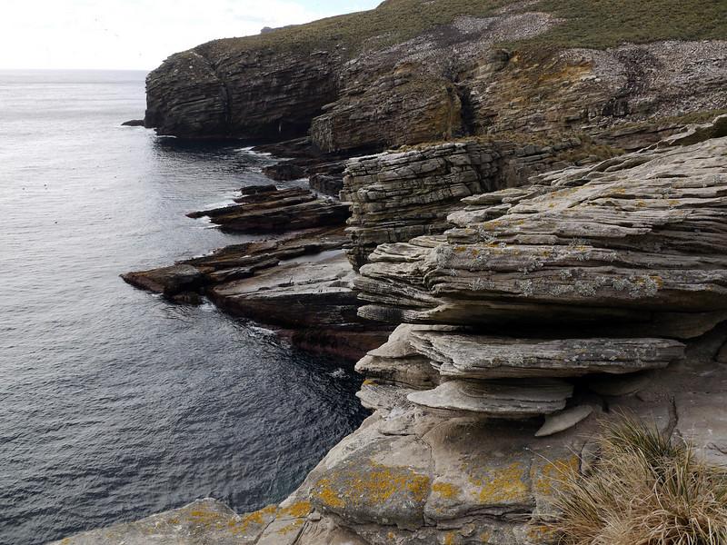 "The rocky coastline near the albatross' ""landing strip"" on New Island, Falkland Islands"