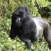 051 - 2005-11 - Rwanda